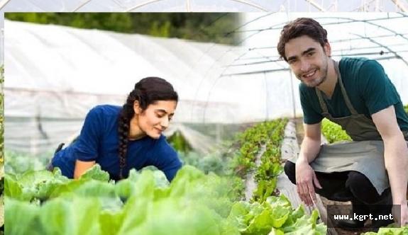 Genç Çiftçi Projelerinin Desteklenmesi Hibe Desteği Başlıyor