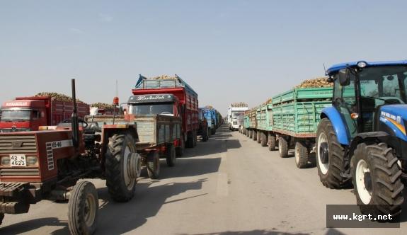 Konya Şeker, Bu Yıl Yaklaşık 3 Milyon 800 Bin Ton Pancar Alacak