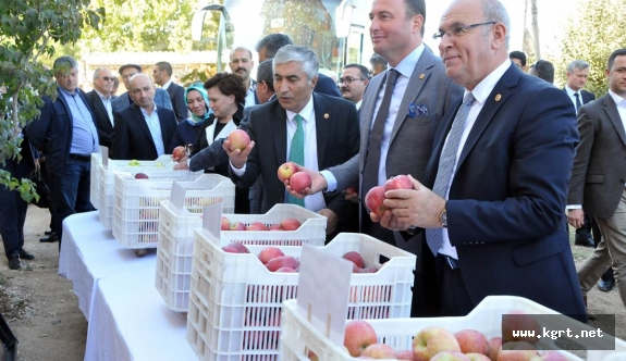 Tarım Komisyonu Üyeleri Bifa'nın Örnek Elma Bahçesine Hayran Kaldı