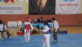 Okullar Arası Taekwondo Müsabakaları...