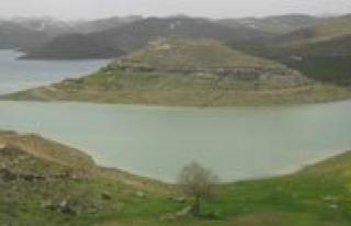 Çevlik Göleti'nin Etrafi Agaçlandiriliyor