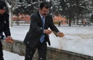 Karaman Belediyesi Aç Kalan Kuslari Unutmadi