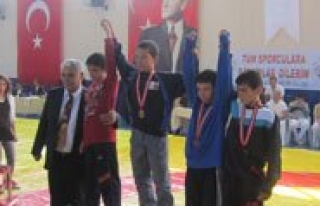 Okullararasi Güres Yarismalarinda 3 Sporcu Dereceye...