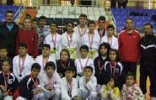 Il Içi Kulüpler Arasi Taekwondo Sampiyonasi Yapildi...