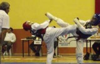 Taekwondo Söleni Sona Erdi