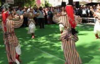Mut Kayisi Festivali Törenle Basladi