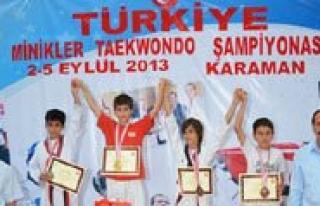 Türkiye Minikler Taekwondo Sampiyonasi Sona Erdi....