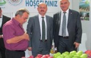 Öztiryaki, Frutech Meyve Yetistiricileri Ve Teknolojileri...