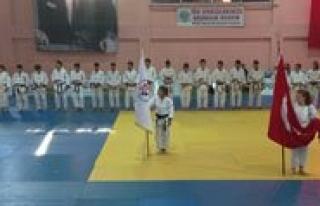 Büyükler Türkiye Judo Sampiyonasi Sona Erdi