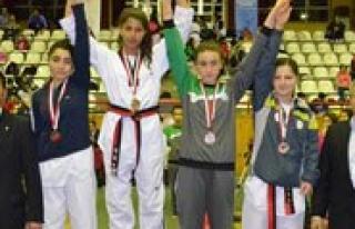 Taekwondo Sampiyonasindan 3 Madalya