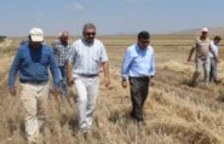 Karaman'da Biçerdöver Denetimi