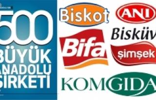 Anadolu'nun En Büyük 500 Şirketi Arasına Karaman'dan...
