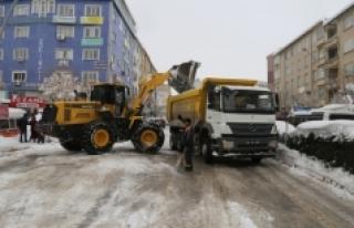 Belediye Kar Yığınlarını Şehrin Dışına Taşıyor