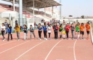 Atletizm Geliştirme Projesi İl Seçmeleri Sona Erdi
