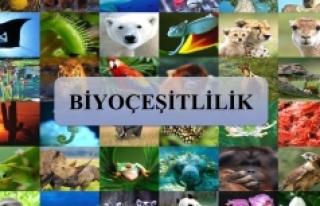 Biyoçeşitlilik Ve Tarımsal Kalkınma Konulu Söyleşi...