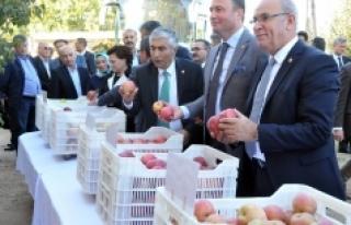Tarım Komisyonu Üyeleri Bifa'nın Örnek Elma...