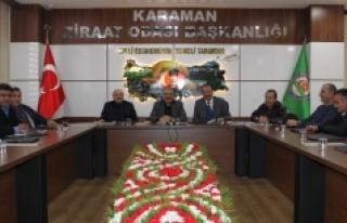 Karaman'daki Zeytin Üreticileri İçin Kooperatifleşme...