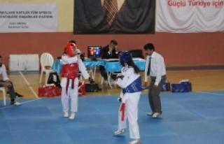 Okullar Arası Taekwondo Müsabakaları Sona Erdi