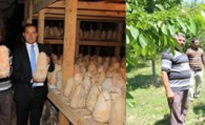 Kaymakam Erat Divle Peyniri ve Ayranci Kirazini Yerinde Inceledi
