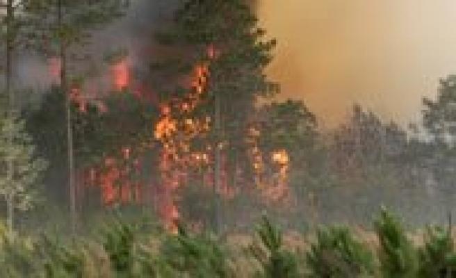 10 Hektarlik Ormanlik Alan Yanginda Yok Oldu