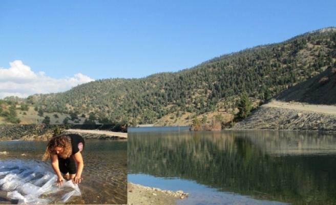 Akın Göletine 30 Bin Adet Sazan Balığı Yavrusu Bırakıldı