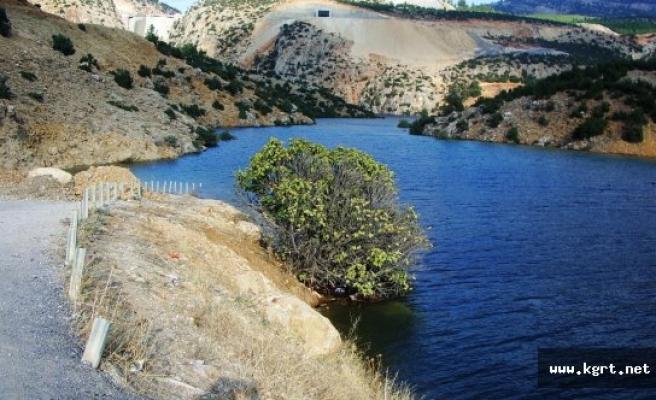 HES Barajının Kıyısında Fetö'ye Ait Cd Ve Kitaplar Bulundu