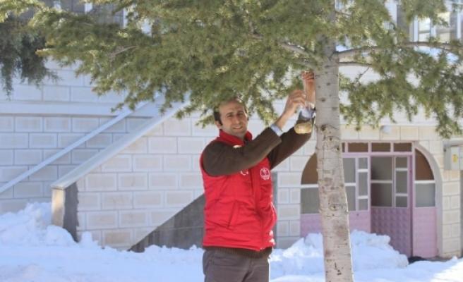 Gençlik Merkezi Soğuk Havada Kuşları Unutmadı