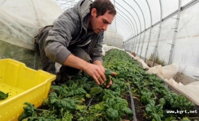 Genç Çiftçi Başvuruları Devam Ediyor