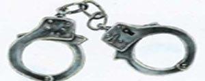 Yakalama Emri Bulunan Yirmi Dokuz Sahis Yakalandi