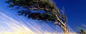 Meteoroloji'den Kuvvetli Rüzgar Uyarisi