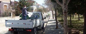 Karaman Belediyesi Hasere Ile Mücadeleye Basladi