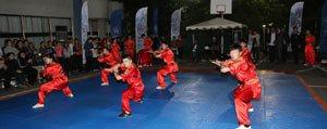 Savunma Sporu ``Wushu`` Artik Karaman`da