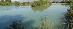 Göksu`da Su Seviyesinin Düsmesi Çiftçiyi Endiselendiriyor