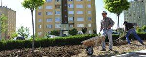 Karaman'da Yesillendirme Çalismalari Sürüyor