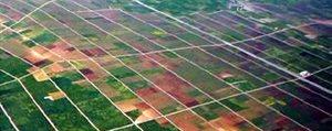 Karaman'da 73 Bin 500 Hektar Tarim Alani Toplulastirildi