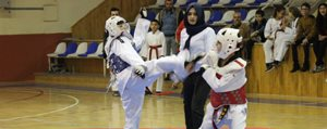 Anadolu Yildizlar Ligi Taekwondo Seçmeleri Yapildi