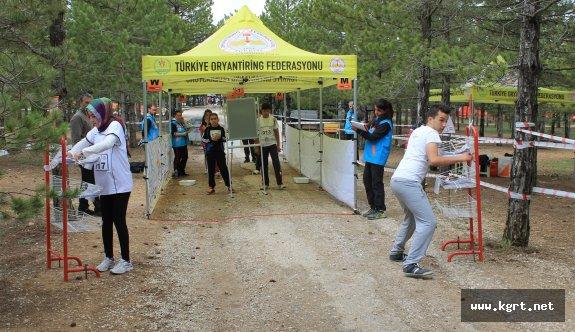 Türkiye, Oryantiring'te Rekora Hazırlanıyor