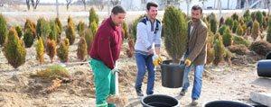 Karaman Belediyesi Fidanliginda Yaz Hazirligi Basladi