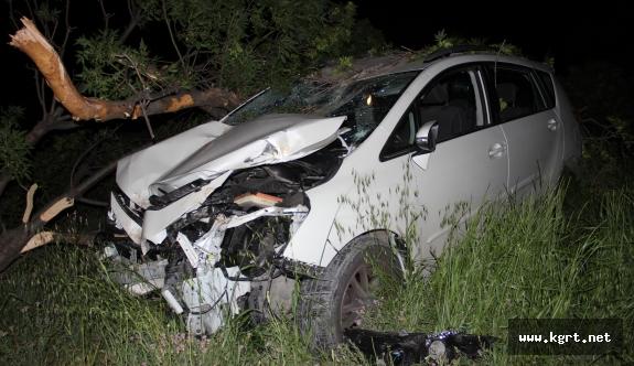 Doktorun Kullandığı Otomobil Ağaca Çarptı: 4 Yaralı