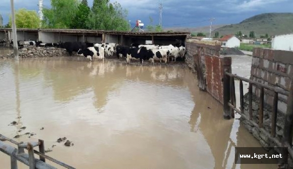 Taşan Dere, Kameni Köyünü Sular Altında Bıraktı