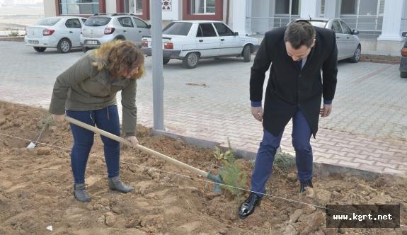 KMÜ'nün Yeşil Alanı Artıyor