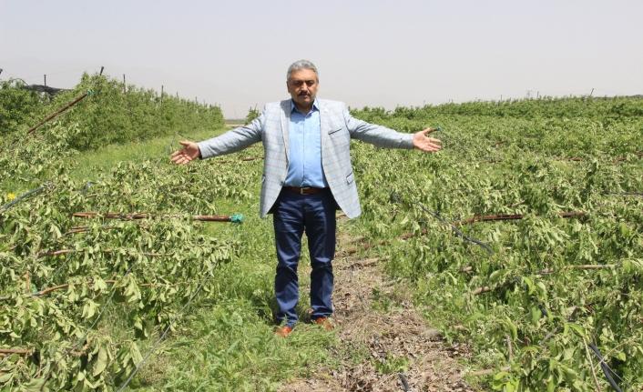 Karaman'da Dolu Yağışının Zarar Tespit Çalışmaları Devam Ediyor