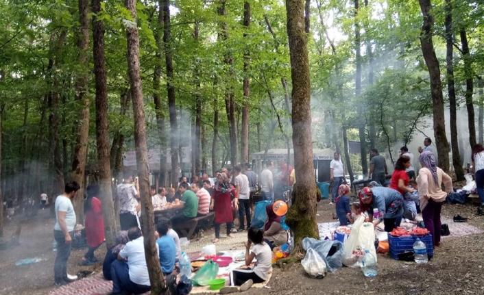 İstanbul'daki Karamanlılar Piknikte Buluştu