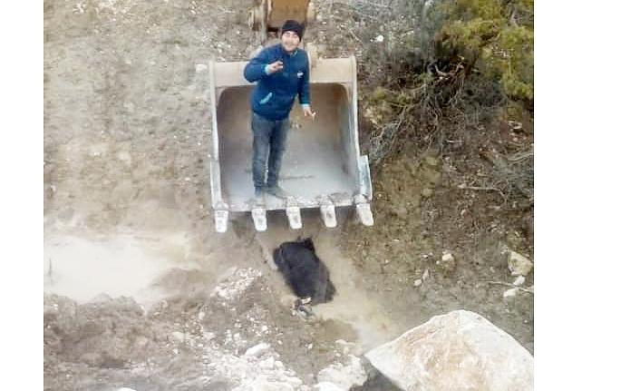 Sürüden Ayrılan Keçiyi İl Özel İdaresi Ekipleri Kurtardı