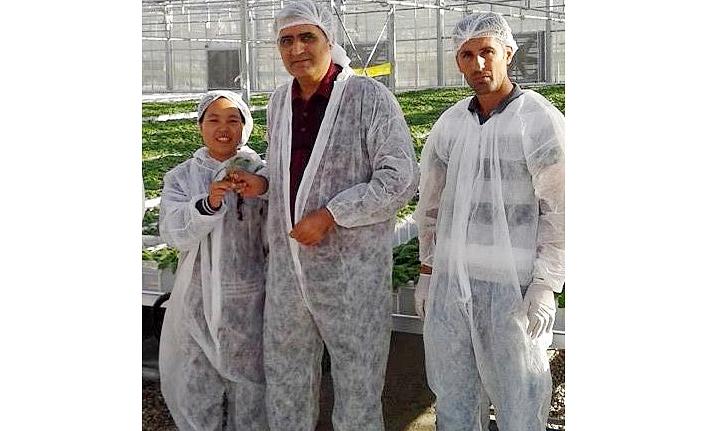 Konya Şeker, Patates Tohumluğuna El Attı, İthalatı Daralttı, Verimli Ve Kaliteli Üretimin Önünü Açtı