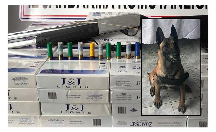 1160 Paket Sigara Ele Geçirildi