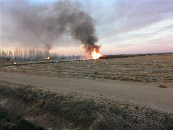 Ereğli`de Tarlada Çıkan Yangın Korkuttu