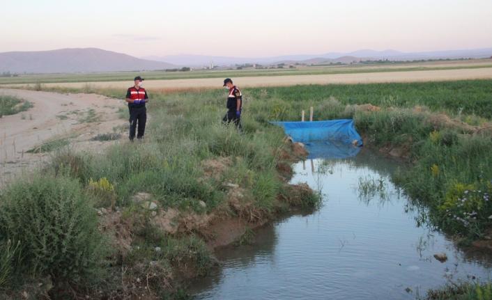 Karaman'da Sulama Kanalına Düşen 2 Kardeş Hayatını Kaybetti