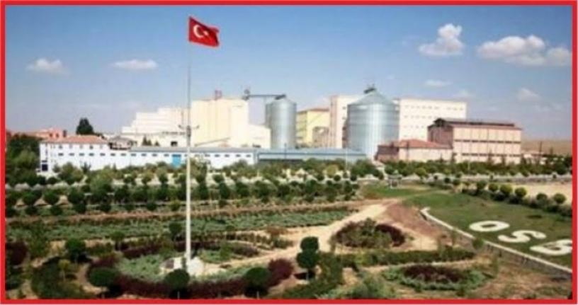 Karaman'da İhracat %49,6 , İthalat %47,9 Arttı