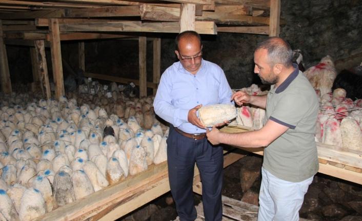 Karaman'da Peynirler Kar Obruğuna Bırakılıyor